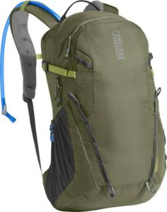lichen green Camelbak day pack