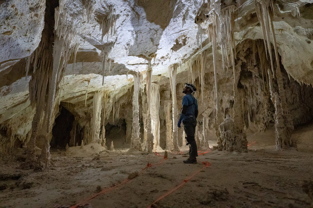 John Waller is standing on a path that is made of orange barrier tape and is looking up at a cave ceiling that is covered in stalagmites.