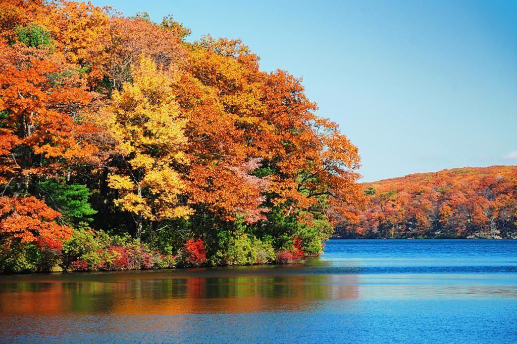 Bright orange and yellow leaves fringe a blue lake in the Catskills.