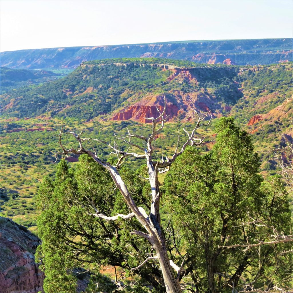 View of Palo Duro Canyon State Park, Texas.